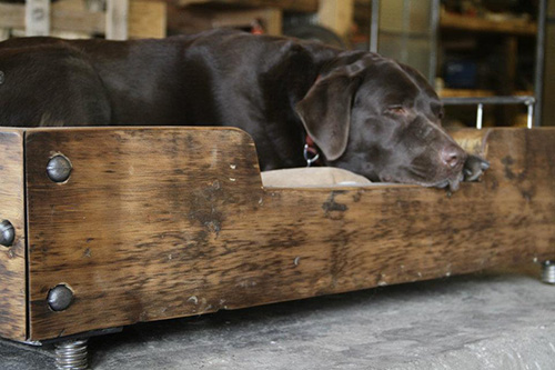 Дизайнерская кровать для собаки от Ольги Гуанабара