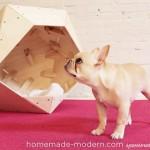 Интересные самодельные домики для собак