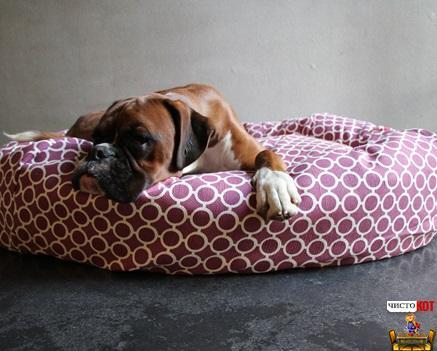Лежак для крупных пород собак Circles Dog Bed