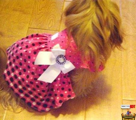 Гламурная одежда для собак – розовое платьице
