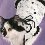 Как связать одежду для кошек — Белое платье с цветочком