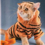 Одежда для кошек своими руками – костюм тигра