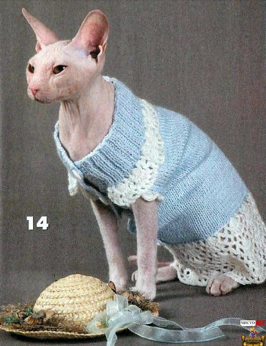 Одежда для лысых кошек – голубое платье