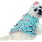 Одежда для мелких собак — Платье принцессы
