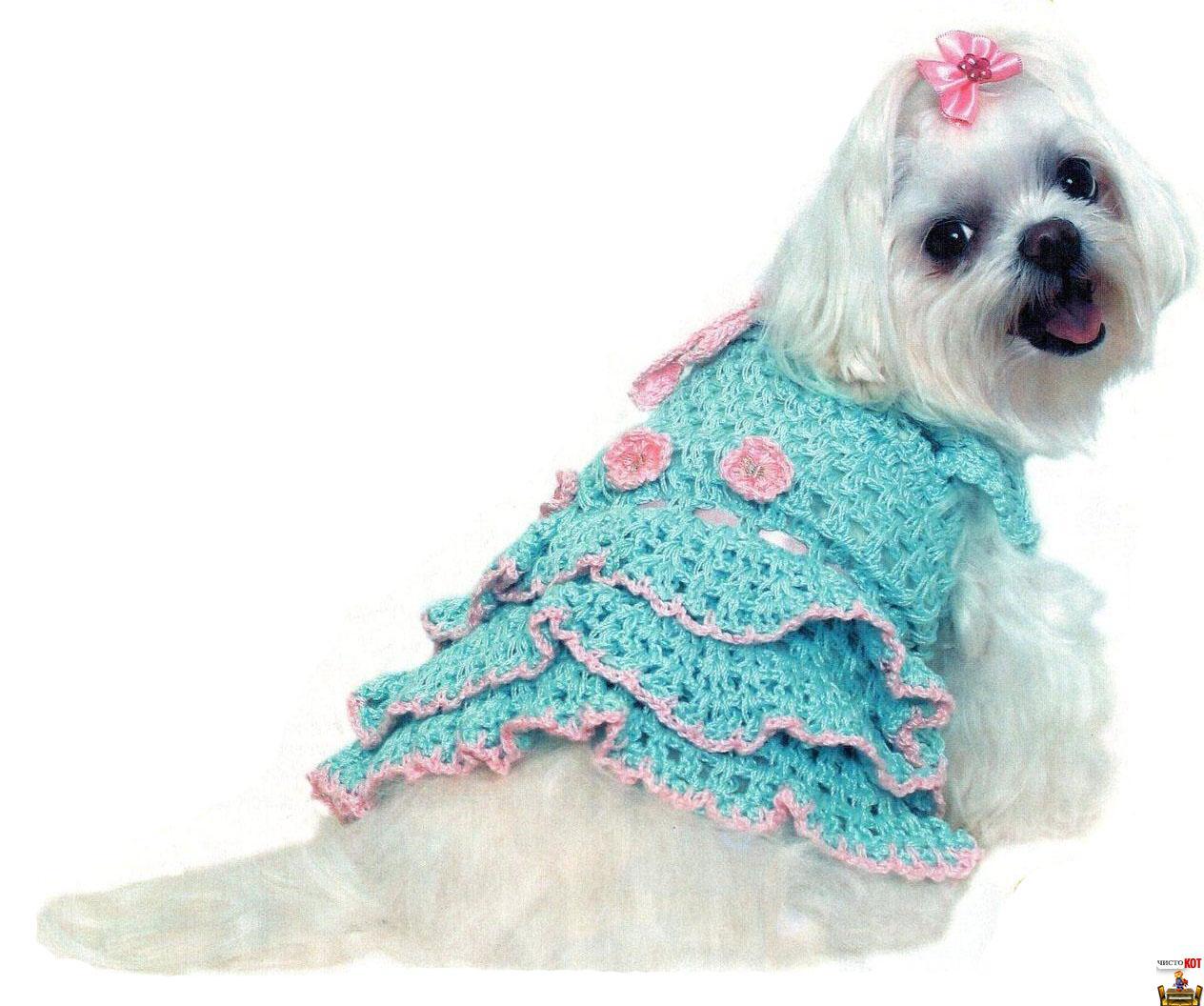 Платье принцессы для собаки