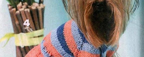 Вязаная одежда для маленьких собак — Полосатое платьице