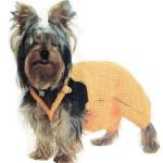 Вязание крючком одежда для собак – комбинезон для йорка