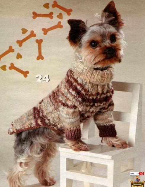 одежды для собак — Свитер