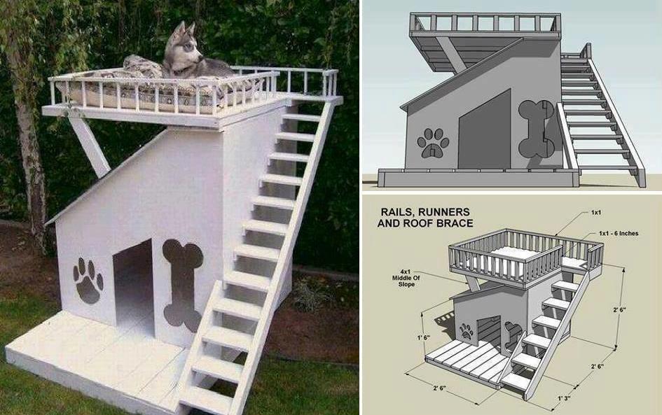Дом для собаки с верхней площадкой