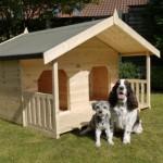 Парный дом для собак