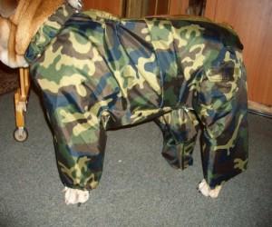 как сшить комбинезон для собаки