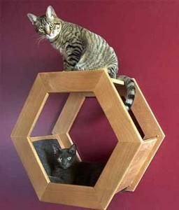 Оригинальная полка для кота