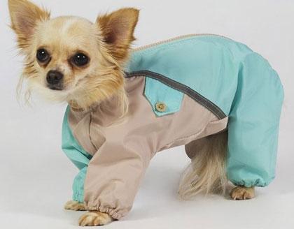 Комбинезон для собак маленьких пород
