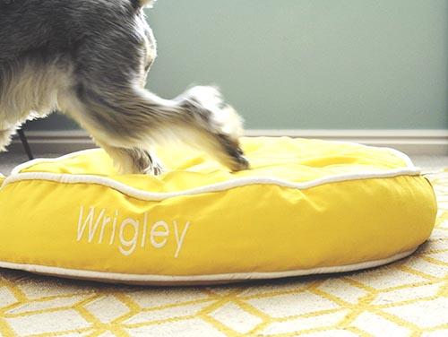 Лежаки для собак Colorblocker от Waggo