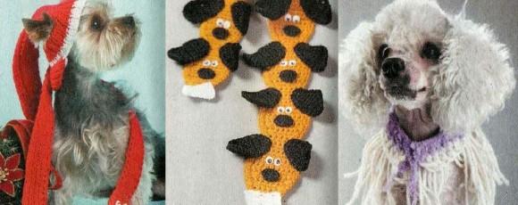 Аксессуары для собак – ошейники и шапочка