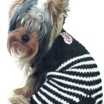 Эксклюзивная одежда для собак — комбинезон для йорка
