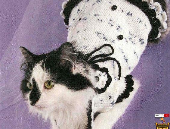 Как связать одежду для кошек