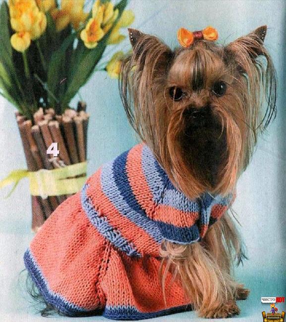 Вязаная одежда для маленьких собак – полосатое платьице