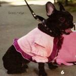 Вязаная одежда для собак – болеро с оборками