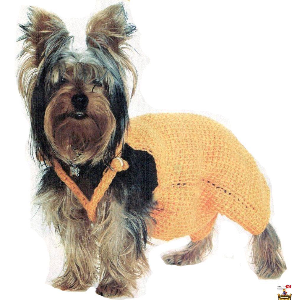 Вязание крючком одежды для собак – комбинезон для йорка