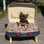Собачья кровать из чемодана своими руками