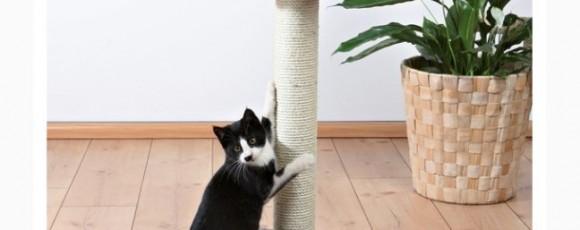 Когтеточка для кошки своими руками