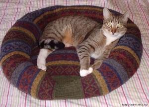 лежанка для кота из ненужного свитера