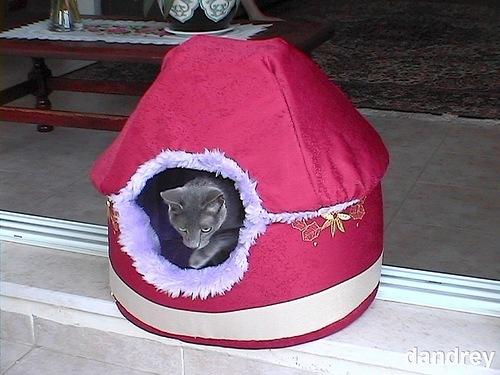 Дом из поролона для кота
