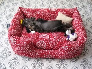 Лежанка для любимого пса