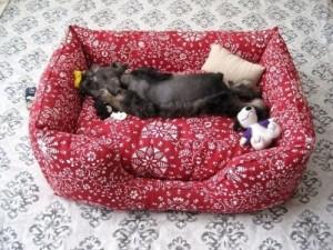 Шьем лежанку для кота или маленькой собаки