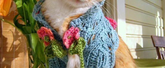 На что обращать внимание в вязаной одежде для кошек